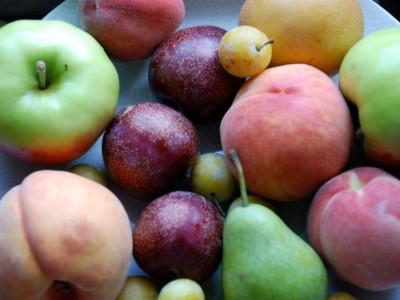 фруктовый салат из яблок, груш и слив
