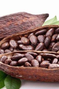 Продукты из какао